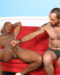 Tom Colt Blacks On Cougars Forum